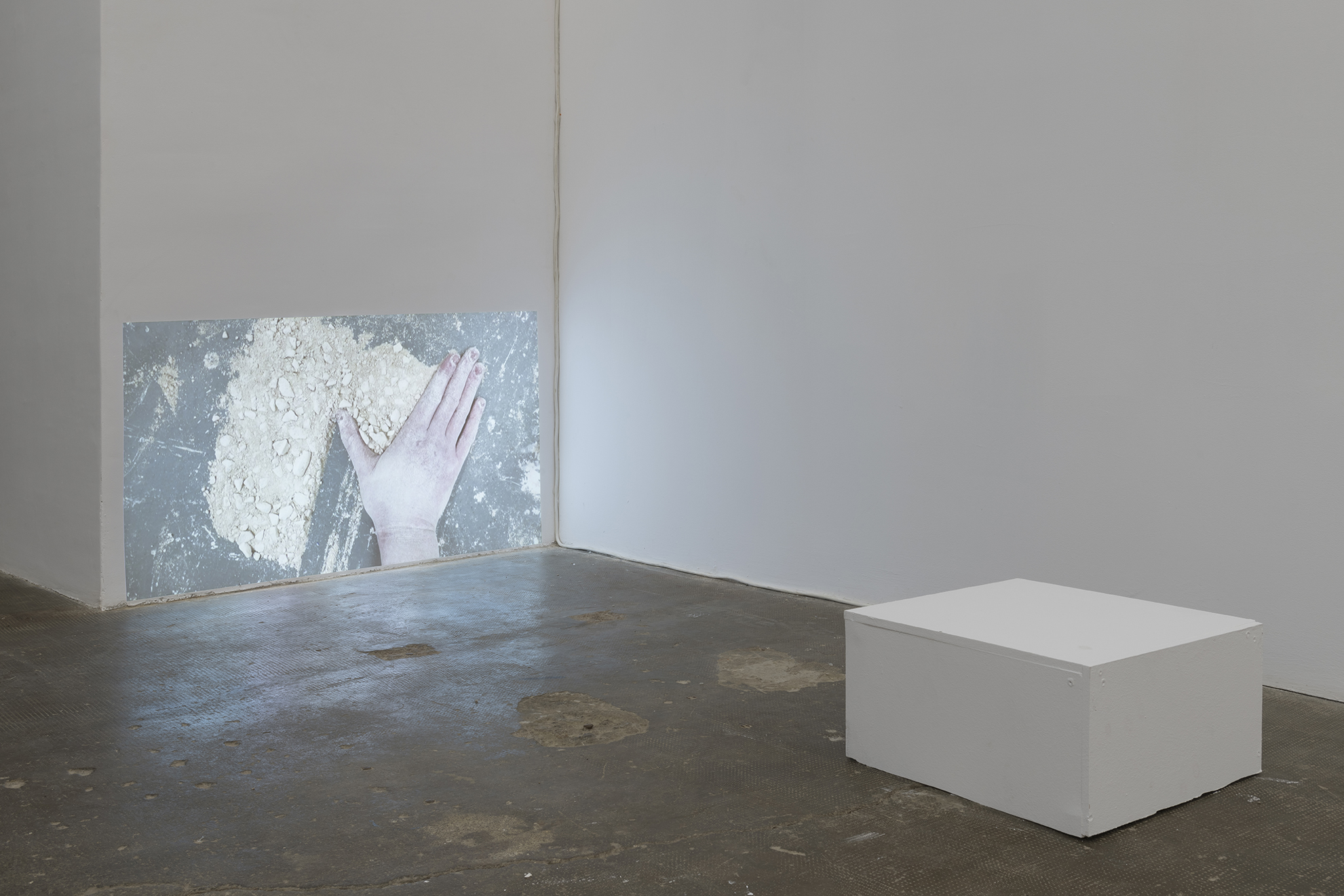 Lydia Gifford / Shape I know / 23.01 - 27.02